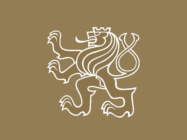 studio-logo-botegher