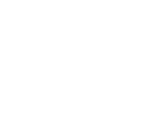 studio-logo-fracca-style